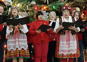 Holiday Cultural Festival