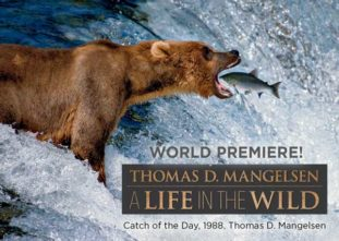 Thomas D. Mangelsen: A Life in the Wild