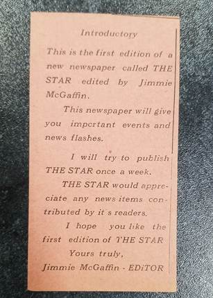 Inside Star newspaper