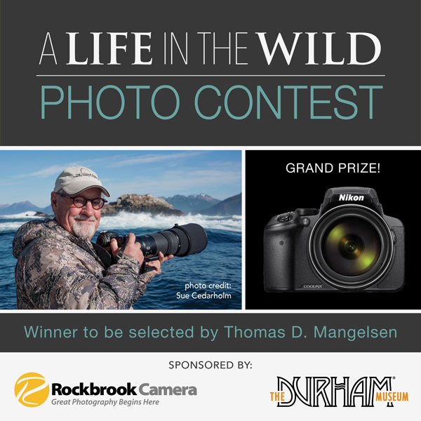 A Life in the Wild - Photo Contest
