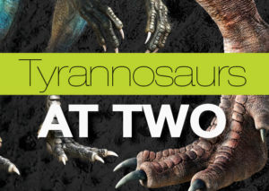 Tyrannosaurs at Two
