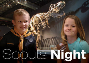 Scouts Night