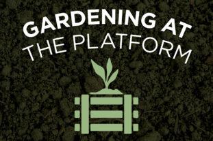 Gardening at The Platform